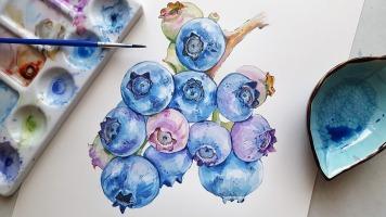 blueberries-3537983_960_720